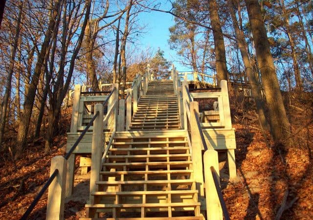 Dune Deck Staircase